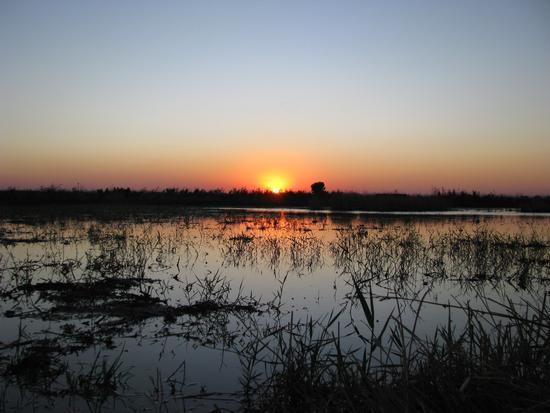 Ultimo sole sul laghetto - Trinitapoli (897 clic)