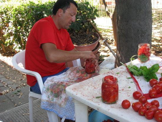 Conserva di pomodori - Trinitapoli (1640 clic)
