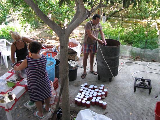 Conserva di pomodori - Trinitapoli (2031 clic)