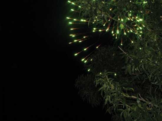 Premio  Cavallieri di Malta-Fuochi d'artificio - Trinitapoli (1676 clic)