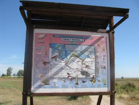Trinitapoli: Zona Umida. Parco (1175 clic)