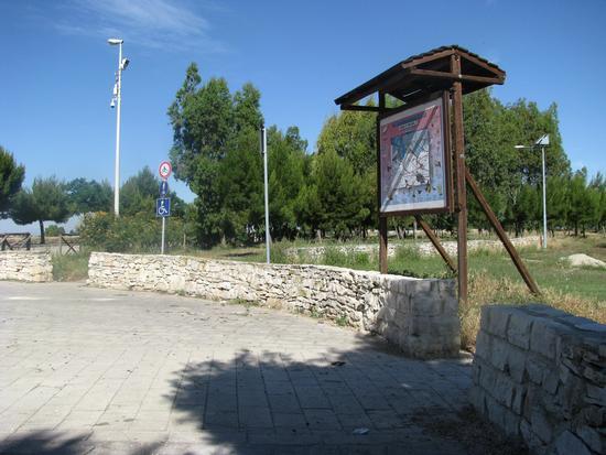 Trinitapoli: Zona Umida. Parco (1191 clic)