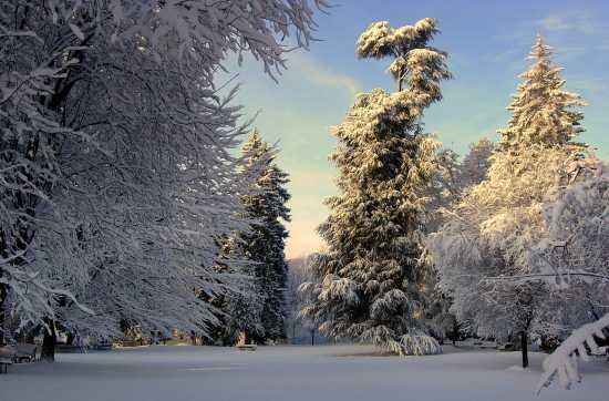 Parco Magni - BORGOSESIA - inserita il 04-Nov-09