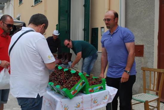 42° Sagra delle ciliegie 12 giugno 2011 - Chiusa sclafani (2523 clic)