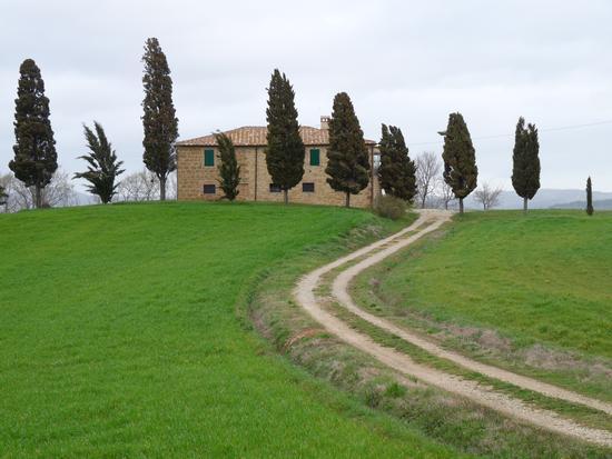 La Toscana - San quirico d'orcia (3021 clic)