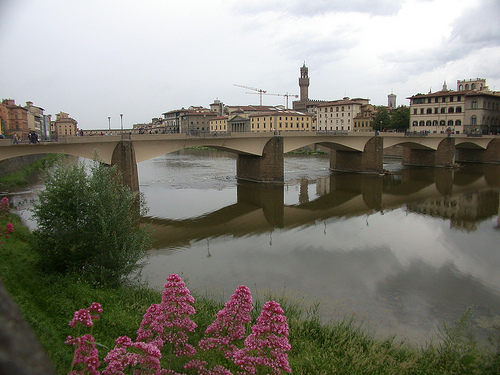 Florencia - Firenze (1586 clic)
