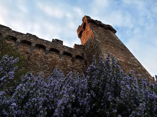 Montalcino (1852 clic)
