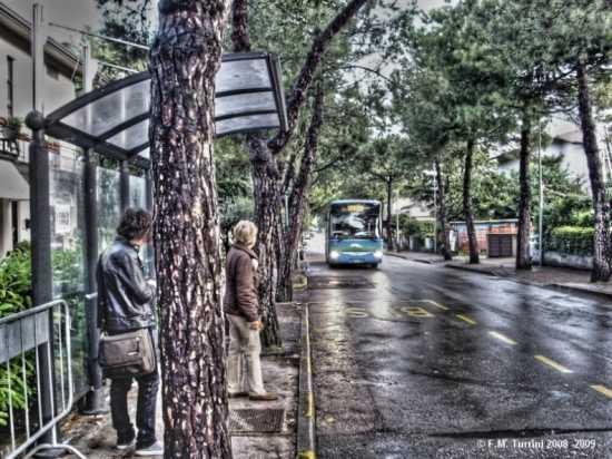 Aspettando...L'AUTOBUS - Sirmione (2925 clic)
