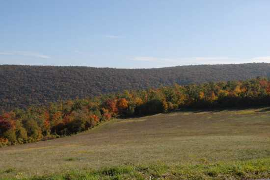 i colori dell'autunno - Cingoli (2139 clic)