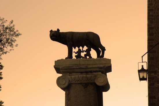 la lupa - Roma (4414 clic)