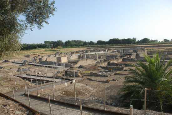 anfiteatro romano - Sibari (3845 clic)
