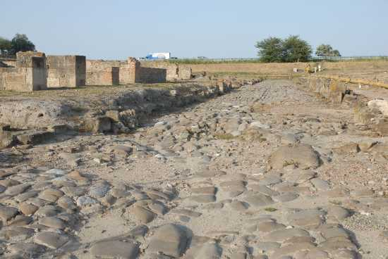 strada romana - Sibari (3223 clic)