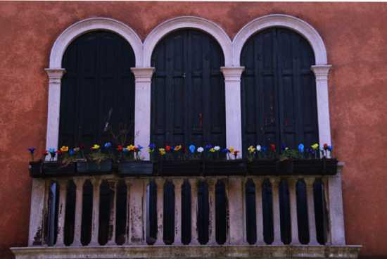 Fiori di vetro  - Murano (2594 clic)
