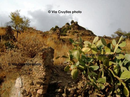 Monte castello - Calatabiano (3261 clic)