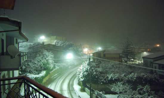 Arbus sotto la neve (3083 clic)