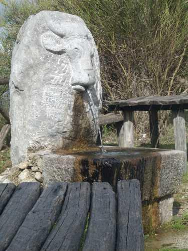 Fontana - Rotonda (2218 clic)
