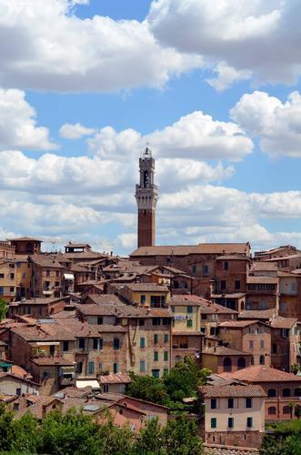 Siena, vista da San Domenico (586 clic)
