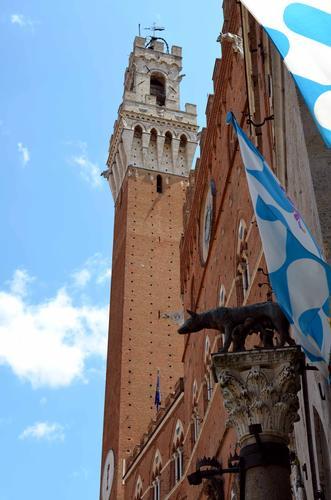 Siena,  piazza del campo (856 clic)