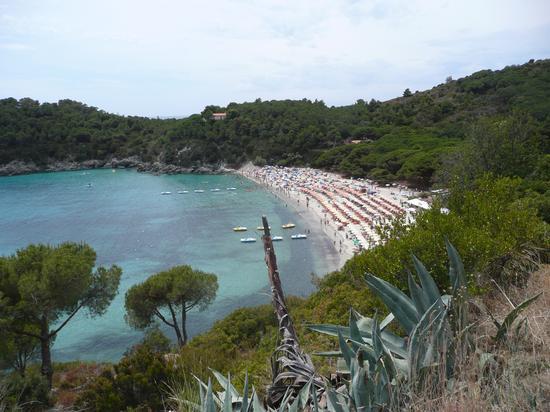 Isola d'Elba (554 clic)