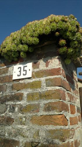 Pilone di vecchio cascinale (754 clic)