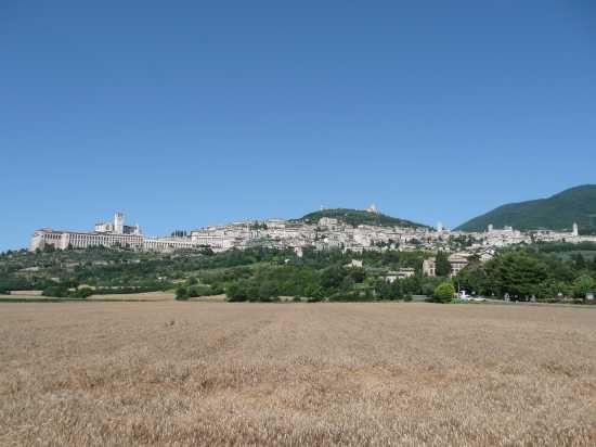 Assisi (PG) (2405 clic)