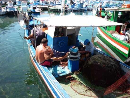Isola di Favignana  (TP)   Pescatori (5087 clic)