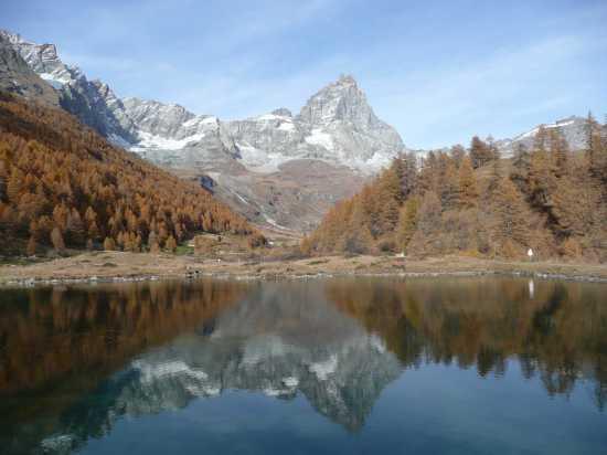Dolci colori d'autunno a Cervinia (8671 clic)