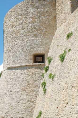 Torrione e mura con Capperi - Ortona (1948 clic)