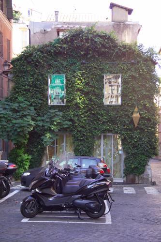 Una casa piena di cristalli e coperta di verde - Roma (1582 clic)