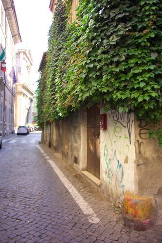 La casa in verde - Roma (1228 clic)