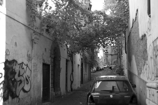 meglio in BN? - Roma (1385 clic)