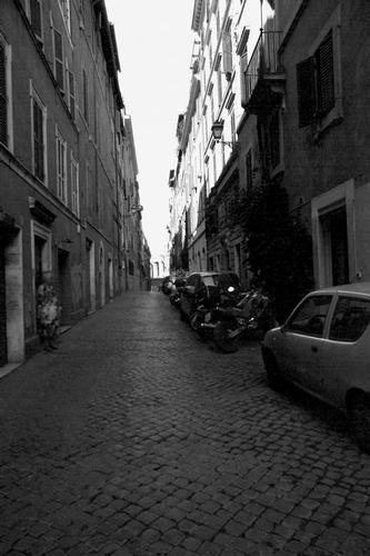 Via Baccina - Roma (1360 clic)