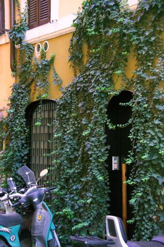 Via Baccina, una vecchia Hostaria? - Roma (1706 clic)