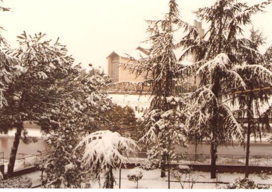 La nevicata della Befana del 1986 - Roma (2424 clic)