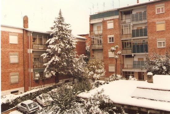 Nevicata dell Befana 1986 - Roma (2056 clic)