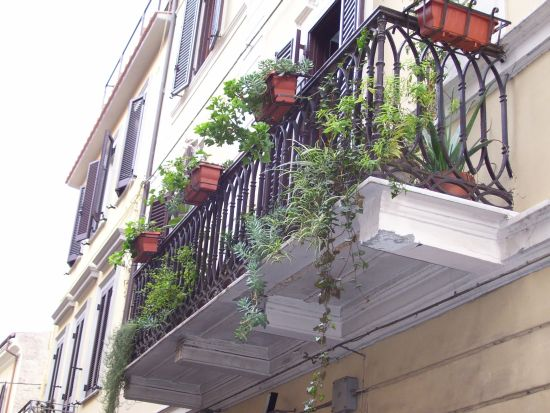 Altro balcone fiorito - Velletri (1720 clic)