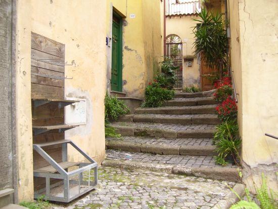 Scale, vicoli e fiori - Velletri (2314 clic)