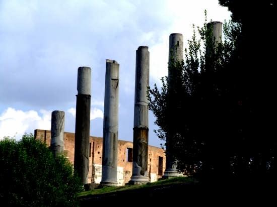 roma (1318 clic)
