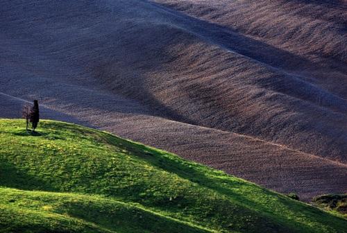 solitari - Volterra (4135 clic)