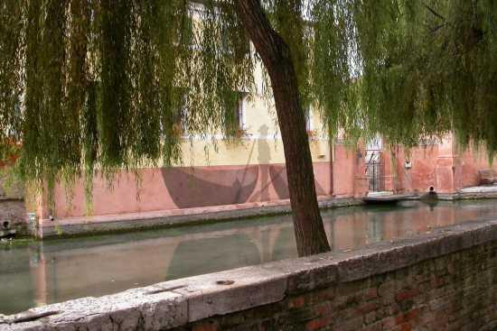 arte sul muro - Treviso (3758 clic)