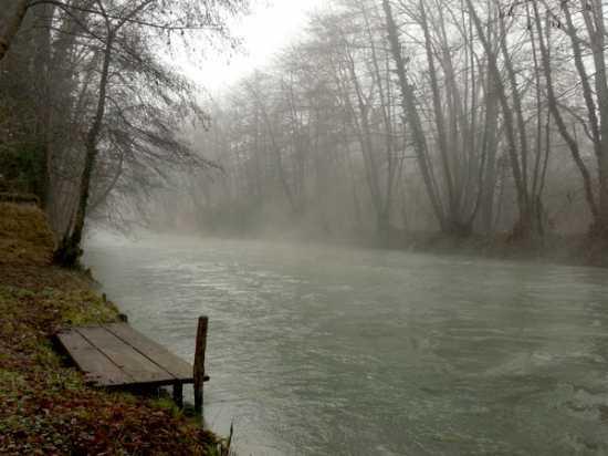 il fiume sile - Quinto (2792 clic)