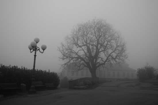nebbia - CASORZO - inserita il 24-Aug-09