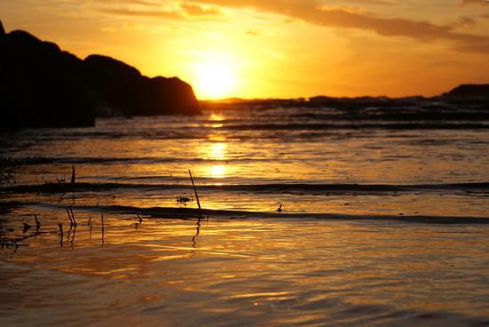 Tranquillo tramonto - Castiglione della pescaia (2165 clic)