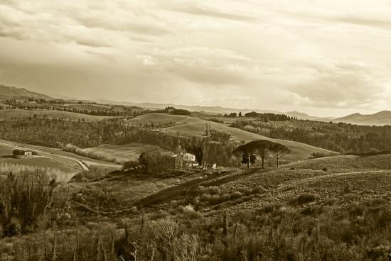 Colline in seppia - Legoli (1244 clic)