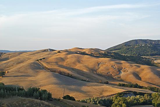 Colline adipose - Volterra (1563 clic)
