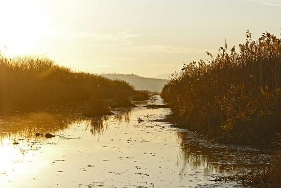 Via d'acqua - CASTELMARTINI - inserita il 13-Sep-12