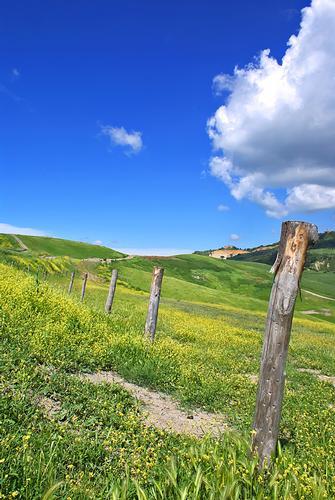 Uno spicchio di primavera - Volterra (2264 clic)