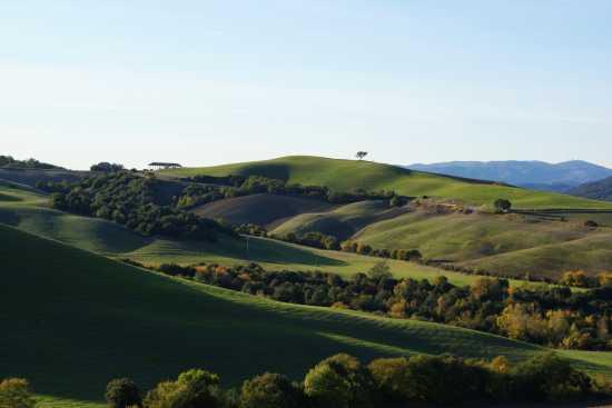 Panorama collinare - Libbiano (3545 clic)