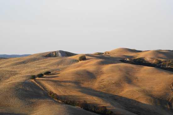 Dossi e cunette - Volterra (3175 clic)