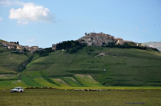 Castelluccio  (3127 clic)